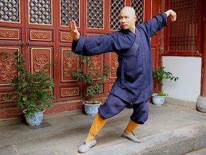 4 Week Shaolin Temple Stance Training Online Course with a Formal Certificate