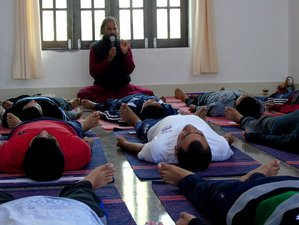 8 Days Level 1 Yoga Nidra Teacher Training Course in Rishikesh, India