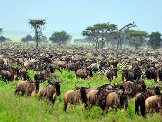7 Days Big Five Safari in Kenya