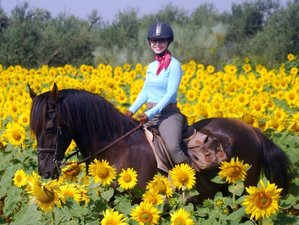 7 Day Happy Trails Horse Riding Holiday Program in Seville