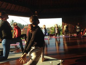 26 Days 300hr Mysitcal Yoga Teacher Training in Bali
