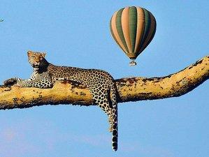 6 Days Lake Manyara, Serengeti, Tarangire, and Ngorongoro Crater Hidden Treasures Safari in Tanzania
