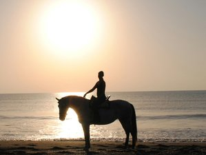 3 Day Heal and Balance, Beach Ride or Spa - Yoga Holiday in Malaga, Costa del Sol
