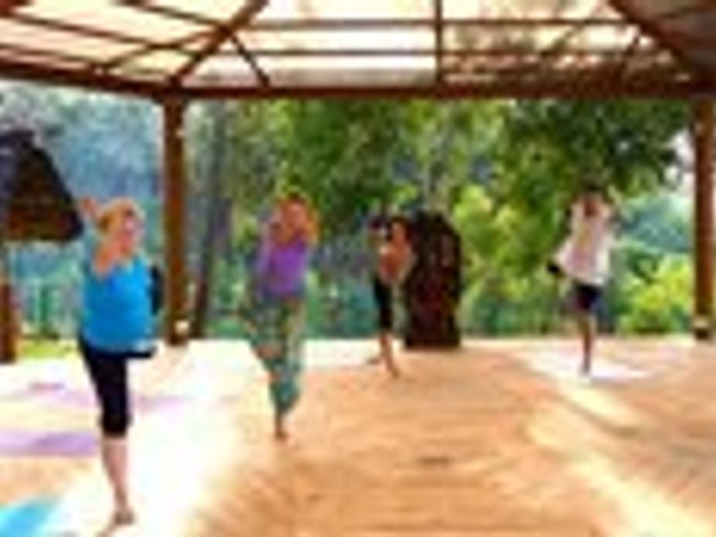 8 Days Beauty and Yoga Retreat in Kerala, India