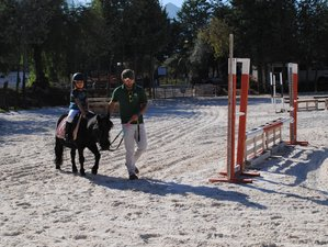 4 Day Body Awareness Family Horse Training in Costa del Sol, Spain