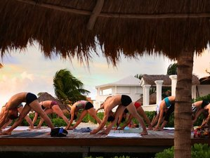 7 Day Yoga Holiday with Lika Elwood in Puerto Morelos
