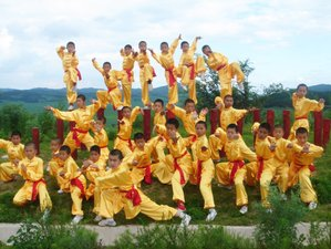 5 Years Advance Wing Chun & Kung Fu Training in China