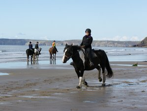3 Day Fantastic Beach Horse Riding Holiday in Pembrokeshire, Wales