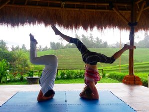 8 Days Village Culture, Yoga, and Meditation Retreat in Tabanan, Bali