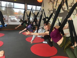 Self-Paced 6-Hour Aerial Yoga Play Advanced Level Online Training Course