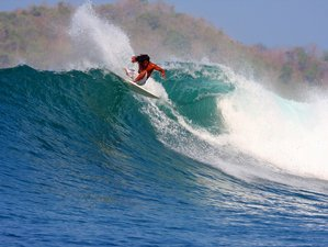 7 Days Tropical Surf Camp in Santa Catalina, Panama