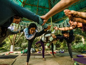 24 Day 200-Hour Soma Yoga and Movement Teacher Training at a Permaculture Farm in Veracruz