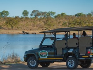Amazing 5 Day Greater Kruger Exclusive Safari Expedition