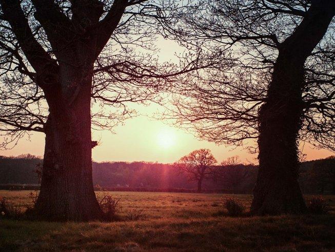 4 Days Restore and Renew Yoga Retreat in UK