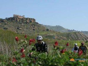8 Day Mountain Bike Tour in Sicily, Italy