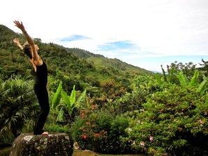 12 Days 'Yoga for Dancers' Retreat in Costa Rica