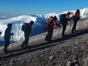 10 Days Mount Kilimanjaro Climbing  Lemosho Route in Tanzania