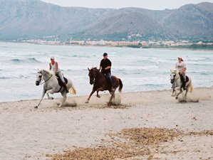 8 Day Trail Horse Riding Holiday in Mallorca, Balearic Islands
