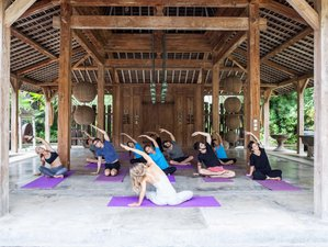 6 Day Inner Journey in Natural Ubud and Urban Seminyak, Bali, Indonesia