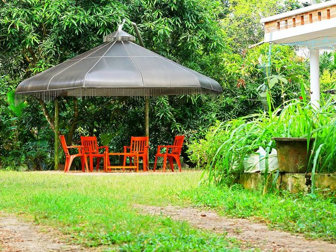 7 Days Ayurveda Yoga and Cooking Holiday in Kerala, India