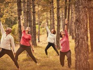 6 días de retiro de yoga, naturaleza y armonización interna en el Pirineo de Huesca