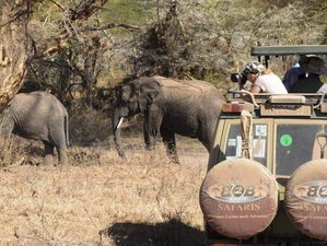 10 Days Walking Safari in Tanzania