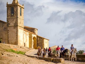 6 Days Tierra de Barros Horse Riding Holiday in Extremadura, Spain
