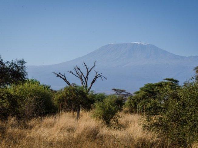 3 Days Affordable Private Safari in Kenya