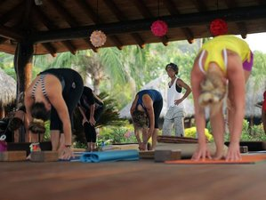 22 Days 200-Hour Cleansing Yoga Teacher Training in Troncones Beach, Mexico
