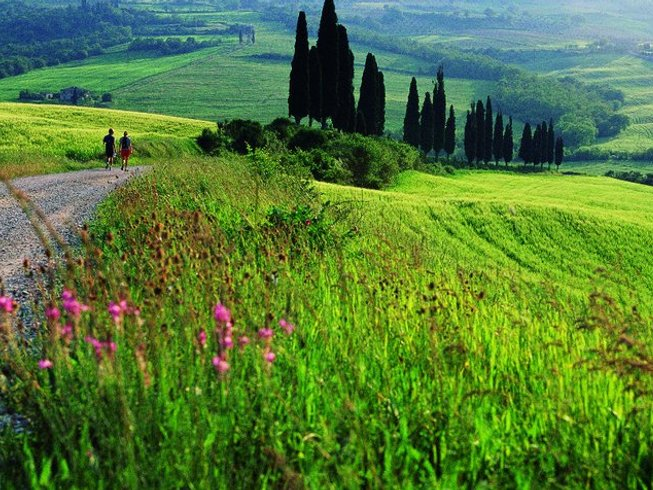 6 Days Active Gourmet Walking & Cooking in Tuscany