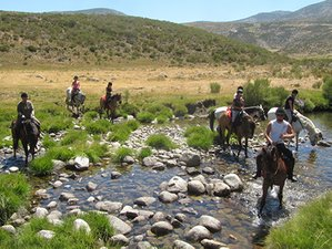 7 Days Crystalline Waters of Gredos Horse Riding Holiday Spain
