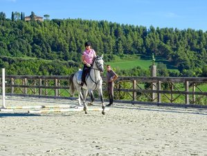 7 Day Luxury Jumping and Flatwork Training in the Italian Marche Countryside, Fermo