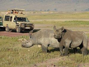 3 Days Lake Manyara National Park, Ngorongoro Crater, and Tarangire National Park Safari in Tanzania