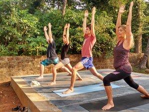 7 jours en retraite de yoga personnalisé et bien-être à Goa, Inde