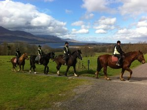 7 Days Killarney Reeks Trail Horse Riding Holiday in Kerry, Ireland