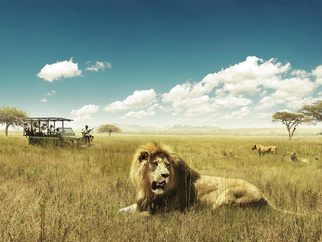10 Days Ultimate Luxury Safari South Africa