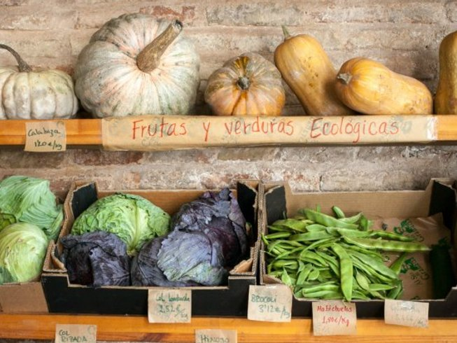 8 Days of Gourmet Cooking Holidays in Spain