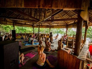 10 Days Festival, Meditation and Yoga Retreat Cambodia