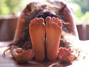 25 Days 200-Hour Rainforest Rebirth Yoga Teacher Training in Stann Creek, Belize