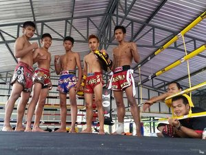 1 Month Intensive Muay Thai Training in Phuket, Thailand