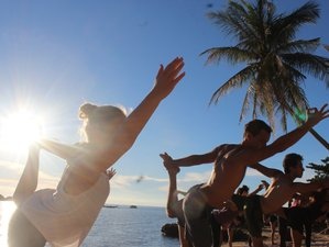 28 Tage 200-Stunden Yogalehrer Ausbildung mit Freiwilligenarbeit in Surat Thani, Thailand