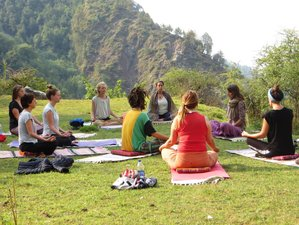 8-Daagse Outdoor Yoga Retraite in de Himalayas, India