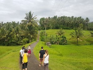 3 Days Rice Terrace Trekking, Yoga, Meditation, and Culture Retreat in Bali, Indonesia