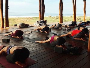 6 Day Rest and Renew Yoga Retreat in Guerrero