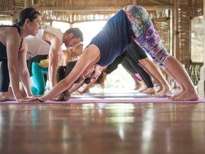 15 Tage 100 Stunden Myofasziale Entspannung und Therapeutische Yin Yogalehrer Ausbildung in Savusavu, Fidschi