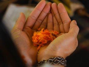 26 Day 200 Hour Yoga Teacher Training in Rishikesh