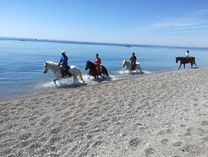 6 Day All-Inclusive Horse Riding Holiday in Rhodes, South Aegean with Scuba Diving, Archery and More