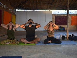 25 Days 200-Hour Kundalini Yoga Teacher Training Course in Goa, India