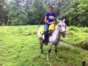 2 Days Intermediate Western Horseback Riding Holiday in Colon, Panama