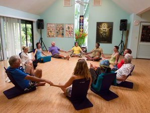 8 Day New Year Special - Journey into the Golden Body Spiritual Healing Retreat in Maui, Hawaii